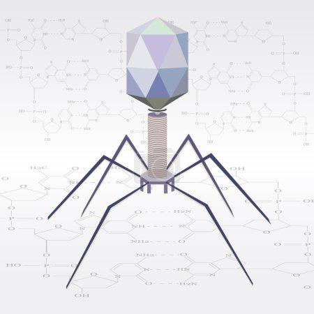 Vector virus bacteriophage model