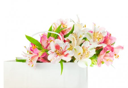 Photo for Beautiful bouquet of white and pink alstroemeria flowers in a paper bag for mother's day, birthday, march 8, greeting concept - Royalty Free Image