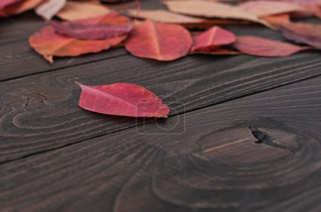 Autumn red leaves on a dark wooden table