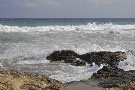 Photo pour Côte de la mer avec des rochers couverts d'algues et de coraux en saillie au-dessus de la surface de l'eau, les vagues se brisant contre les rochers sur une plage du mole de wyspoe dans la roche gracieuse, sombre recouvert d'algues - image libre de droit