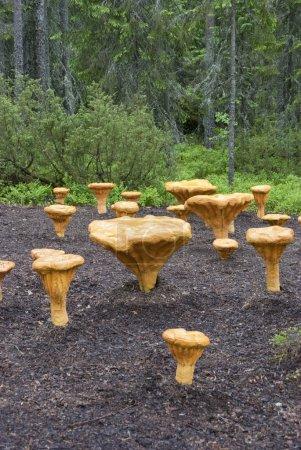 Photo pour Champignons artificiels chanterelle situé dans une forêt, champignons où vous pouvez vous asseoir, de grands champignons dans la forêt, l'installation de pâte à papier, des champignons résine, un fragment de défrichement forestier sur lequel cultiver des champignons - image libre de droit