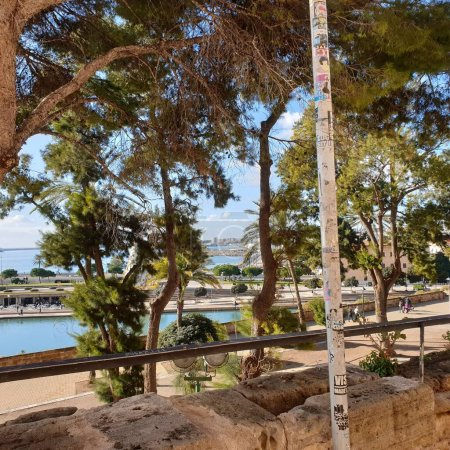 Photo for Views of the sea park in palma de mallorca - Royalty Free Image