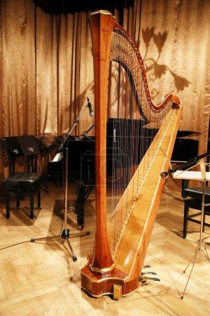 Beautiful golden harp in the auditorium before concert