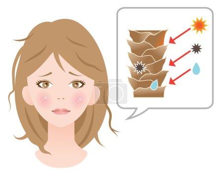 damaged hair cuticle woman