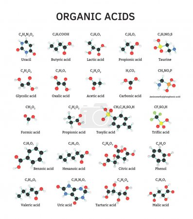 Organic acids molecules set