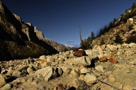 barren bhagirathi river gorge with scattered boulders at gangotri national park, uttarakhand, india