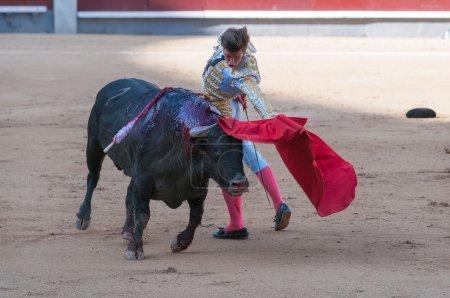 """Matador. Arena of """"Las Ventas"""""""