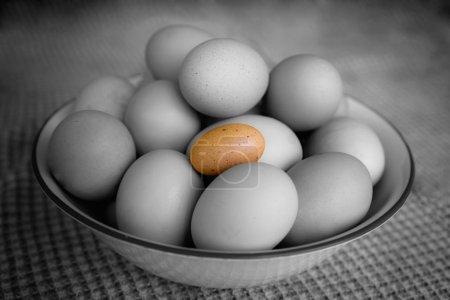 Bowl Full of Brown Farm Fresh Eggs