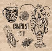 Crawfish set Vector illustration