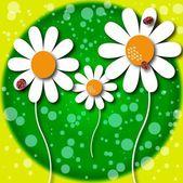 Ilustrace daisy květ