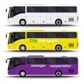 Buses vans and minivans