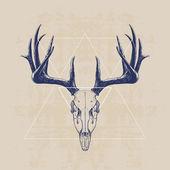 Lebka jelen