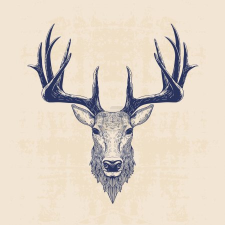 Illustration for Deer head, vintage hand drawn illustration - Royalty Free Image