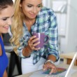 Постер, плакат: Two female designers in office looking at laptop