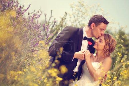 Photo pour Mariée et marié embrasser sa mariée dans le champ - image libre de droit