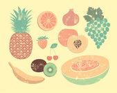 Collection of retro fruits Vintage vector set of fruits