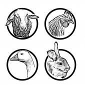 farm animal rings 1