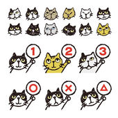 Various cat's face ranking illustration