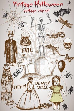 Vintage clip art for halloween design