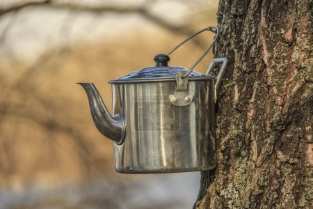 Kettle for tea camping