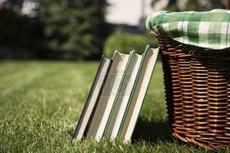 Picnic basket and books