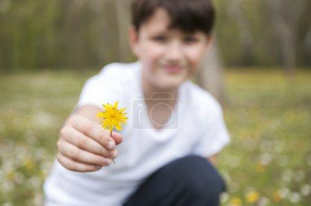 Little boy offering flower