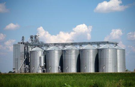 Corn dryer silos