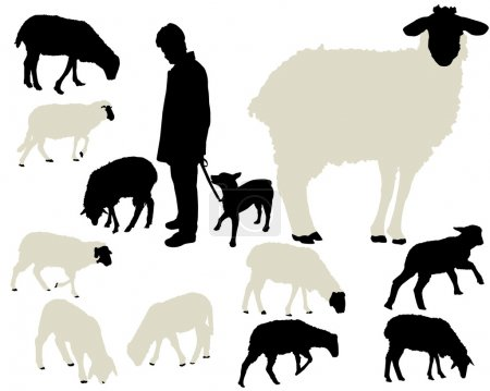 Sheep vector silhouettes