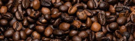 Draufsicht auf frische und braune Kaffeebohnen, Banner