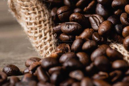 Photo pour Gros plan du sac à dos avec grains de café torréfiés - image libre de droit