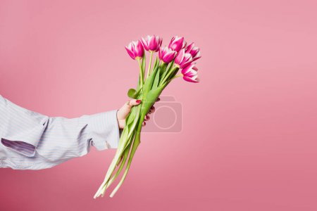 Photo for Cropped view of bouquet of tulips in hand of woman isolated on pink - Royalty Free Image