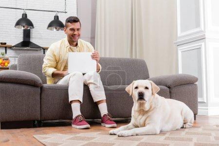 smiling freelancer sitting on sofa with laptop near labrador lying on carpet