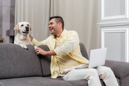 cheerful freelancer petting labrador while sitting on couch with laptop