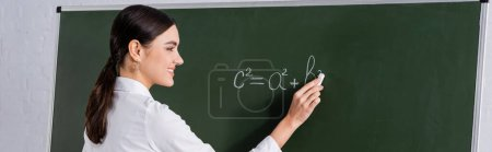 Smiling teacher writing equation on chalkboard, banner