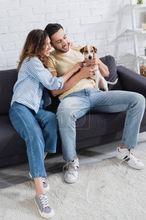 cheerful interracial couple petting jack russell terrier in living room