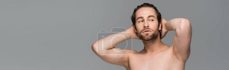 shirtless man posing while looking away isolated on grey, banner