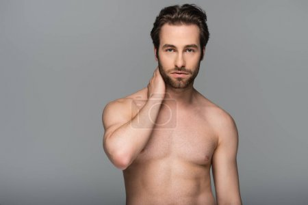 Photo for Shirtless man posing while looking at camera isolated on grey - Royalty Free Image