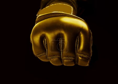 Gold Glove for the martial arts, mma.