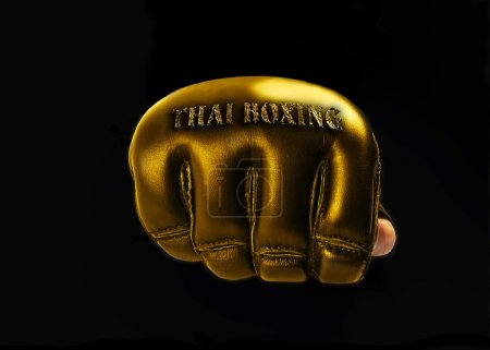 "Gold Glove for the martial arts,mma. text ""thai boxing"""