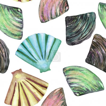 A pattern with the watercolor shells and mussels