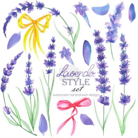 Foto de Conjunto, colección de los aislados elementos florales de lavanda y lazos de decoración, dibujados a mano en una acuarela sobre un fondo blanco - Imagen libre de derechos