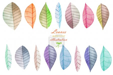 Photo for Set, collection of the watercolor leaves, hand painted isolated on a white background - Royalty Free Image