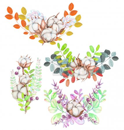 Collection of illustrations of watercolor cotton flowers bouquets