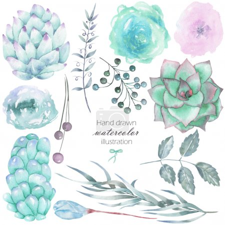 Photo for Set with the isolated watercolor floral elements: succulents, flowers, leaves and branches, hand drawn on a white background, for self-compilation of the bouquets and ornaments - Royalty Free Image