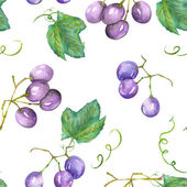 A seamless pattern with the watercolor blue (violet) grapes. Painted hand-drawn in a watercolor on a white background.