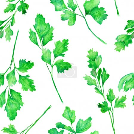 A seamless pattern with the watercolor parsley on a white background