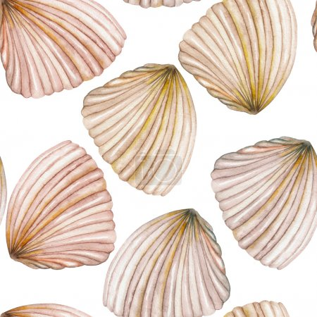 A pattern with the watercolor shells