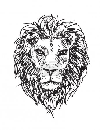 sketch lion head
