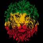 Rasta theme with lion head on black background. Ve...