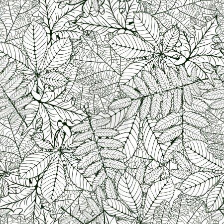 oak, chestnut, rowan, maple leafs